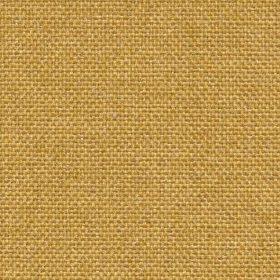 mustard NTBO5