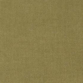 gold mustard STC13
