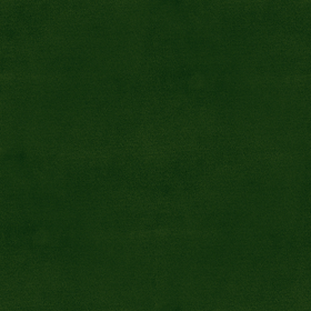 forest TSV33
