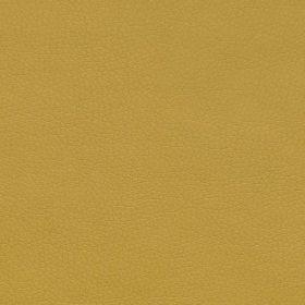 mustard NTLO5